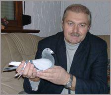 golebie-woliery